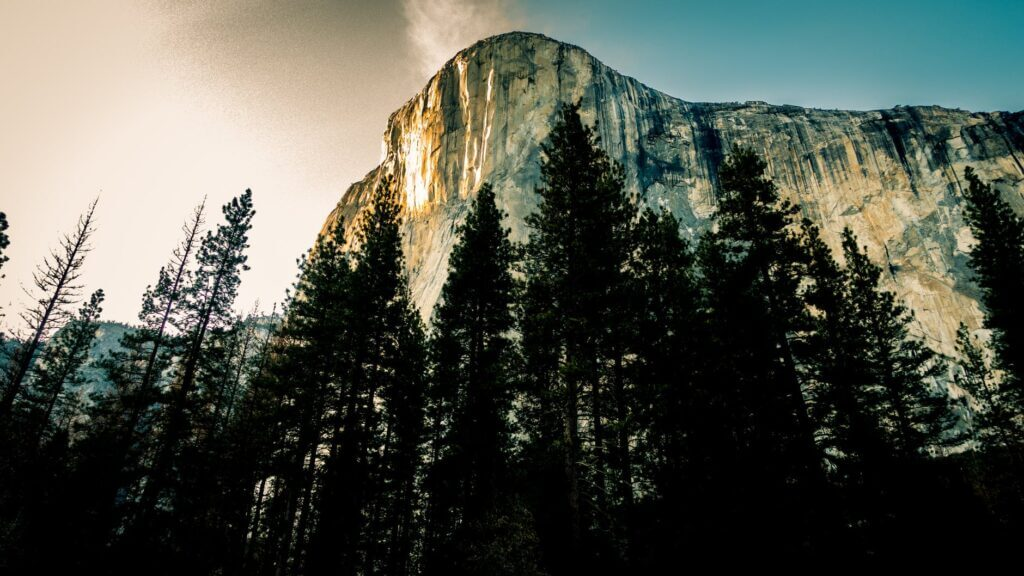 blue mountains cliff cliffside conifer